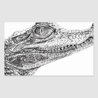 Adesivo Retangular Desenho da tinta do crocodilo do bebê