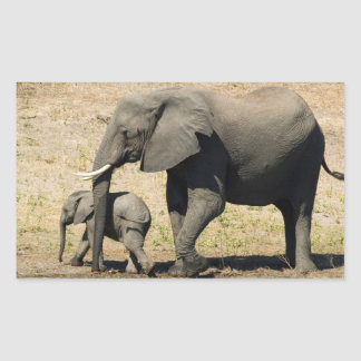 Adesivo Retangular Elefante e mãe do bebê