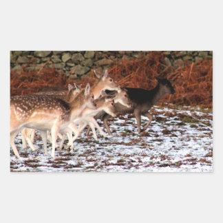 Adesivo Retangular Em suas marcas (cervos)