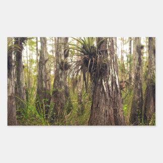 Adesivo Retangular Epiphyte Bromeliad na floresta de Florida