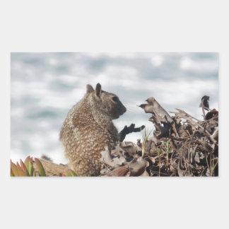 Adesivo Retangular Esquilo pequeno
