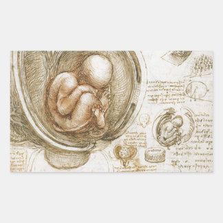 Adesivo Retangular Estudos de Leonardo da Vinci do feto no ventre