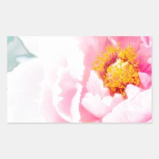 Adesivo Retangular Flor cor-de-rosa chave alta da peônia
