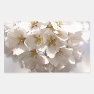 Adesivo Retangular Flor de cerejeira