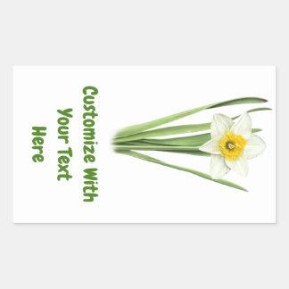 Adesivo Retangular Flor do primavera do Daffodil