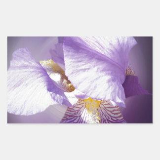Adesivo Retangular flor roxa da íris