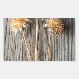 Adesivo Retangular Flor secada de Sun