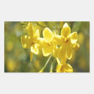 Adesivo Retangular Flores amarelas perfumadas do jasmim de Carolina