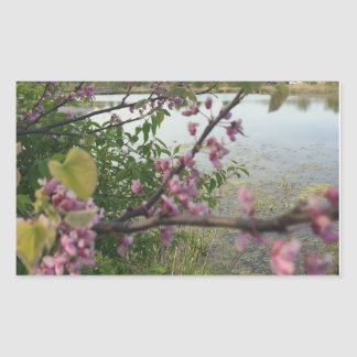 Adesivo Retangular Flores cor-de-rosa por uma lagoa