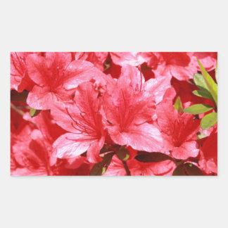 Adesivo Retangular flores do vermelho da azálea