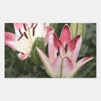 Adesivo Retangular Flores e botões asiáticos do lírio do pirulito