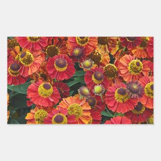 Adesivo Retangular Flores vermelhas e alaranjadas do helenium