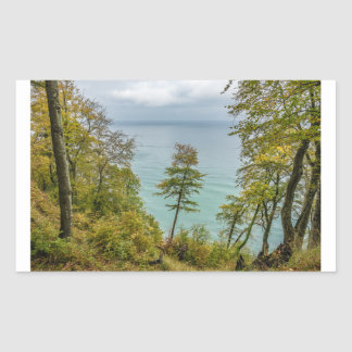 Adesivo Retangular Floresta litoral na costa de mar Báltico