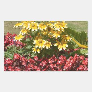 Adesivo Retangular Flowerbed dos coneflowers e das begónias