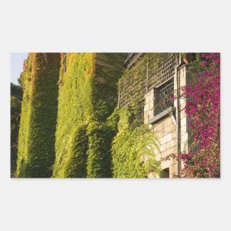Adesivo Retangular Folhas coloridas em paredes da casa
