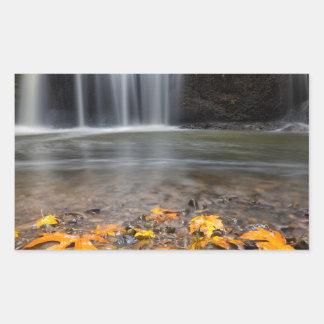 Adesivo Retangular Folhas de bordo da queda na cachoeira escondida