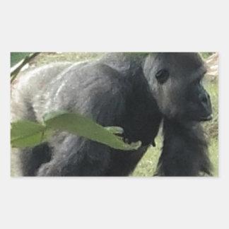 Adesivo Retangular Gorila do Silverback