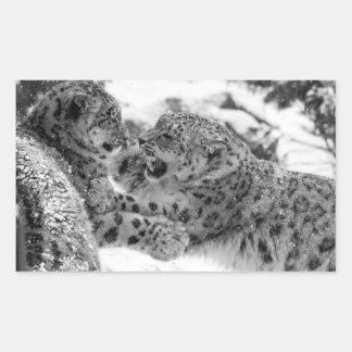 Adesivo Retangular Irmãos Jogo-De combate do leopardo de neve