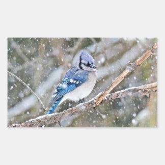 Adesivo Retangular Jay azul em uma tempestade de neve