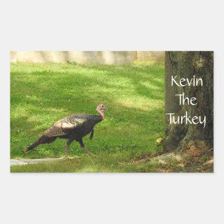 Adesivo Retangular Kevin a Turquia - Wethersfield velho, CT