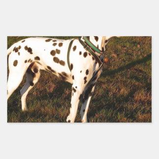Adesivo Retangular Kevin o Dalmatian