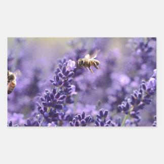 Adesivo Retangular Lavanda do primavera com o floral roxo das abelhas