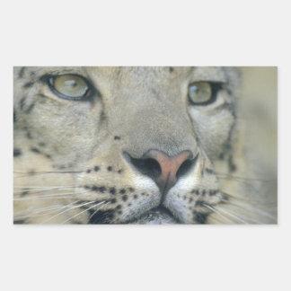 Adesivo Retangular leopardo de neve