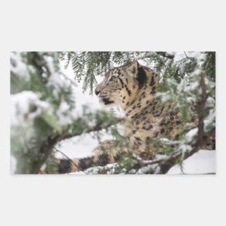 Adesivo Retangular Leopardo de neve sob Bush nevado