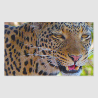 Adesivo Retangular Leopardo manchado