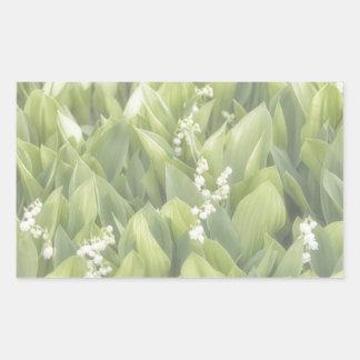Adesivo Retangular Lírio do remendo da flor do vale na névoa