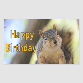 Adesivo Retangular Mr.Squirrel que deseja um feliz aniversario