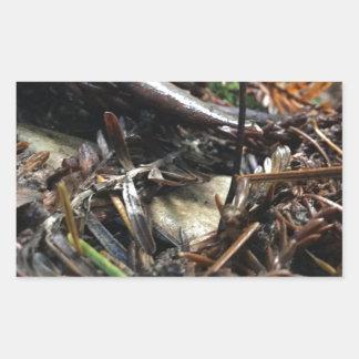 Adesivo Retangular Não tropece o cogumelo