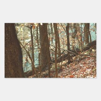 Adesivo Retangular Nas madeiras