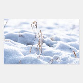 Adesivo Retangular Neve em um prado no macro do inverno
