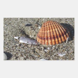 Adesivo Retangular Os Seashells no verão da areia encalham a opinião
