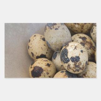 Adesivo Retangular Ovos de codorniz