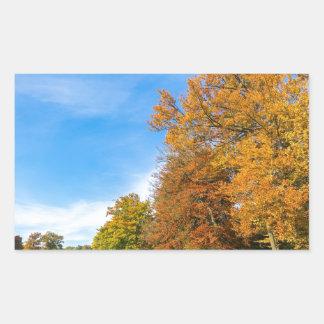 Adesivo Retangular Paisagem colorida da queda com céu e prado das