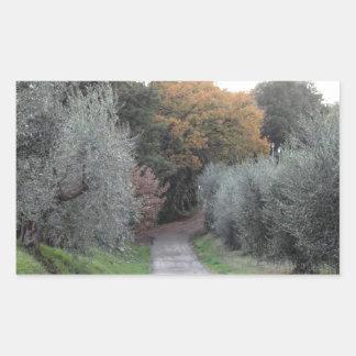 Adesivo Retangular Paisagem rural com a estrada asfaltada no outono