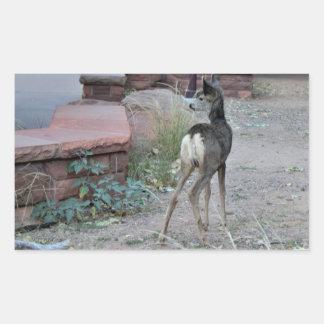 Adesivo Retangular Parque nacional de Zion da jovem corça dos cervos