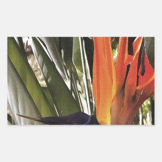 Adesivo Retangular Pássaro de paraíso (Strelitzia)