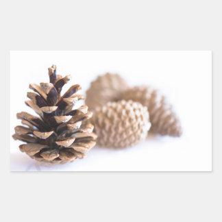 Adesivo Retangular Pinecones