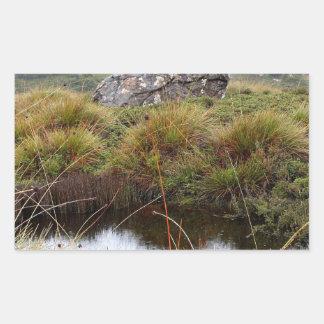 Adesivo Retangular Reflexões enevoadas da manhã, Tasmânia, Austrália