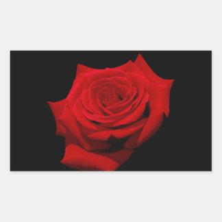 Adesivo Retangular Rosa vermelha no fundo preto