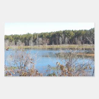 Adesivo Retangular Santuário de pássaro do lago sams