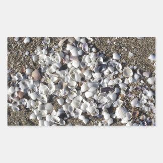 Adesivo Retangular Seashells na areia. Fundo da praia do verão