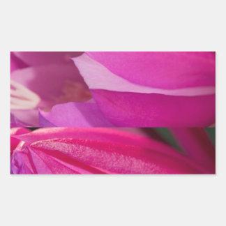 Adesivo Retangular Sedução cor-de-rosa perfeita: Corações românticos