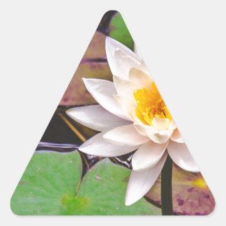 Adesivo Triangular Almofada de lírio na água