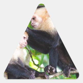 Adesivo Triangular Amor do macaco