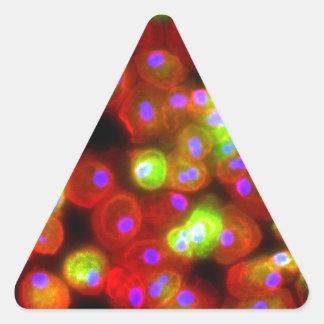 Adesivo Triangular Arte da ciência das pilhas do macrófago