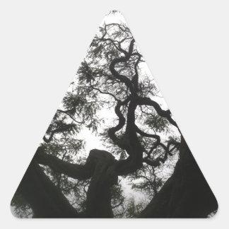 Adesivo Triangular Árvore do anjo